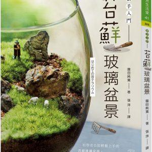 苔蘚玻璃盆景:新手入門