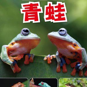 動物奇觀:青蛙