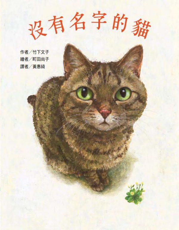 沒有名字的貓
